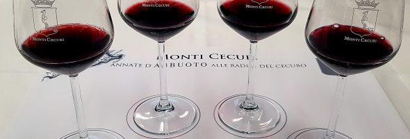 Prima verticale di Abbuoto: l'evoluzione di un vino antichissimo!